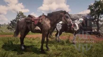 Dois cavalos à caça no RDR 2