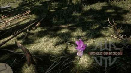 Dragon's mouth Orchid in RDR 2