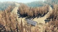 Ash floresta v2.5 para Spin Tires