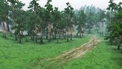 Altai Krai para Spin Tires