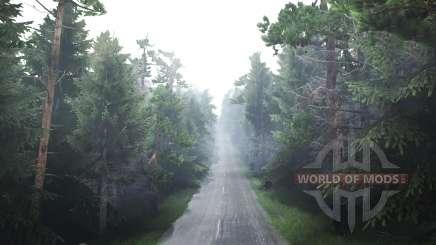 Floresta para Spin Tires