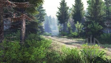 Floresta v1.1 para Spin Tires