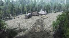 O trabalho florestal