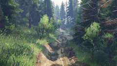 Urso trilha v2.0