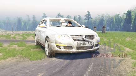 Volkswagen Passat (B6) para Spin Tires