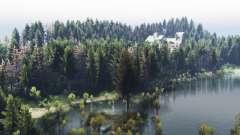 Russo floresta v2.0