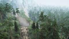 Floresta Siberiana 3