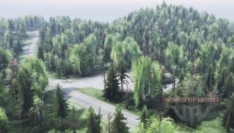montanha de Altai para Spin Tires