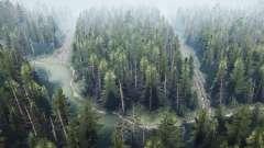 Floresta de pinheiros 2 v1.1