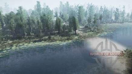 Floresta do lago para MudRunner