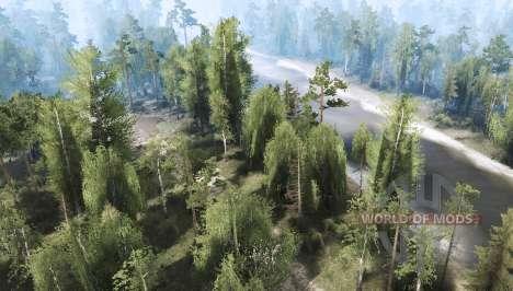 Floresta 2 para Spintires MudRunner