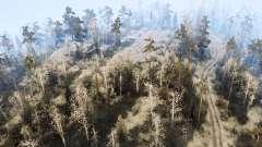 Área de floresta para MudRunner