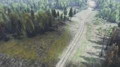 Estrada para Spin Tires