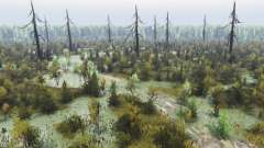 Floresta fantasmagórica 2