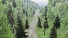 Um Pedaço De Altai