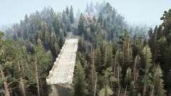 Sussurrando floresta