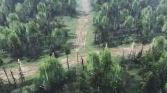 Floresta seca v2.0 para Spin Tires