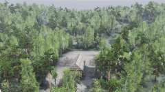 Através da floresta