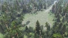 Floresta do jogo
