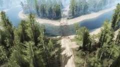 No meio da floresta