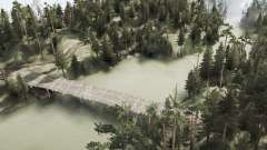 Pinheiro lago